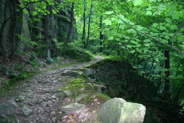 resin trail
