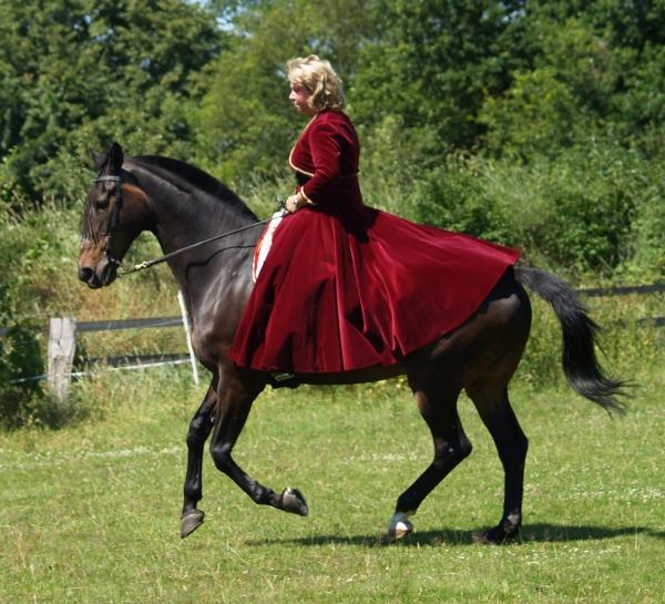 hanoverian galloping