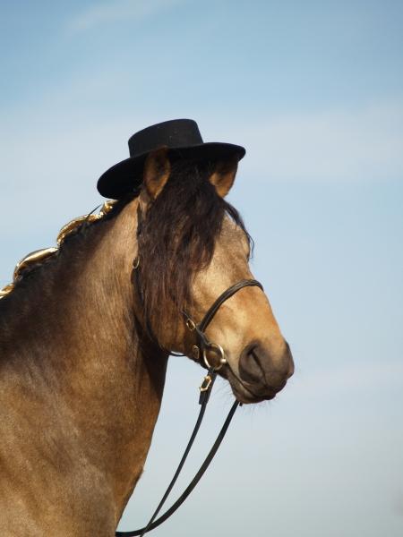 esperanzador with hat