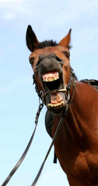 hearty yawning