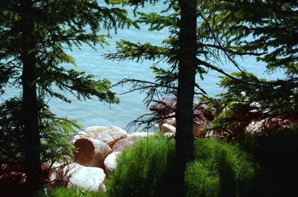 a shoreline of a body of