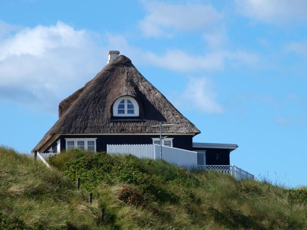 house, in, søndervig - 2566995