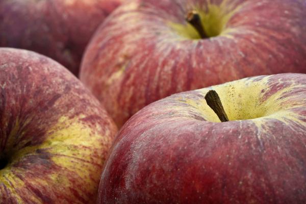 apples - 3803333