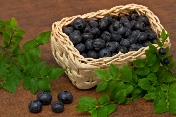 blueberries, -, blueberries, ... - 5336409