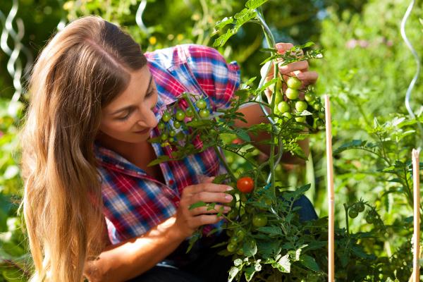 gardening in summer woman