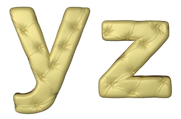 luxury beige leather font y z