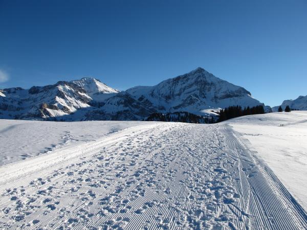 winter scenery near gstaad spitzhorn