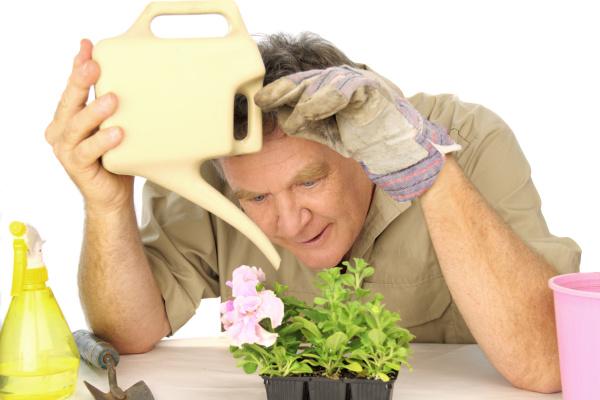 dedicated gardener