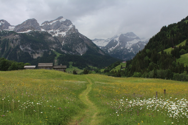 beautiful landscape near gstaad mountains and