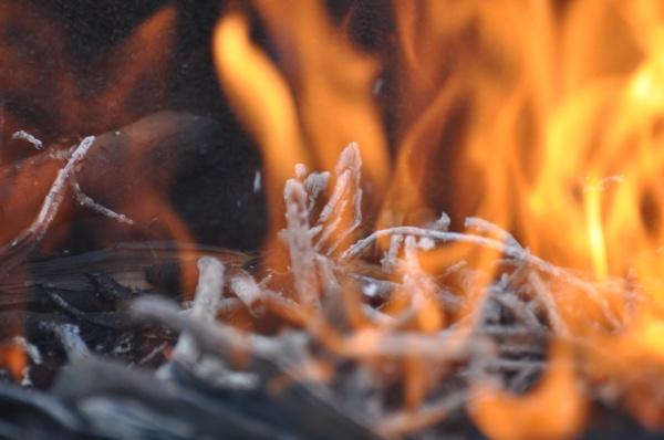 embers in the fire barrel