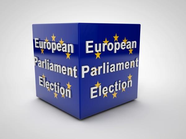 european parliament election
