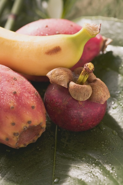 arrangement assorted banana bananas barbary fig