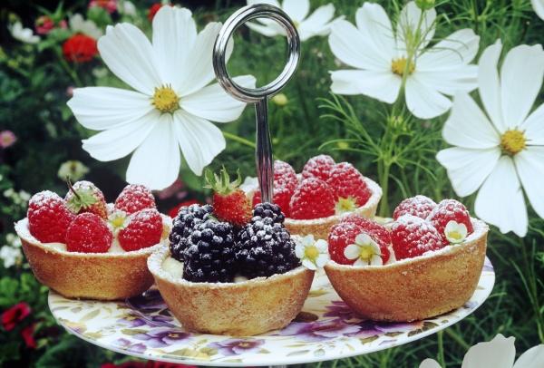 al fresco dining back garden berries