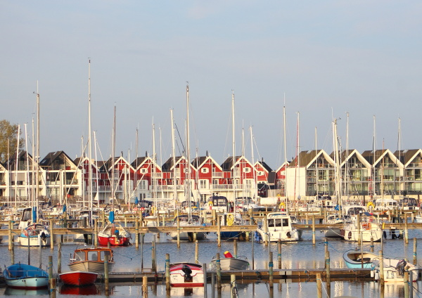 view of small yacht harbor with