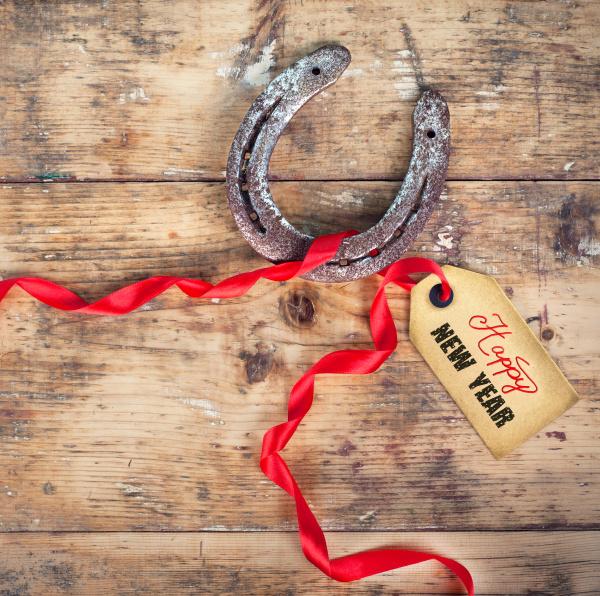 horseshoe with red ribbon