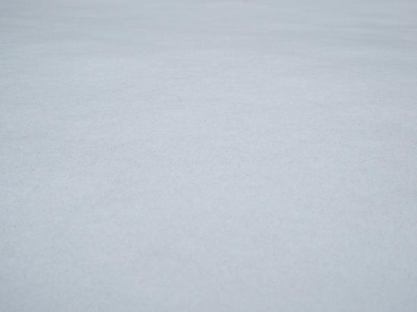 snow or snow ski