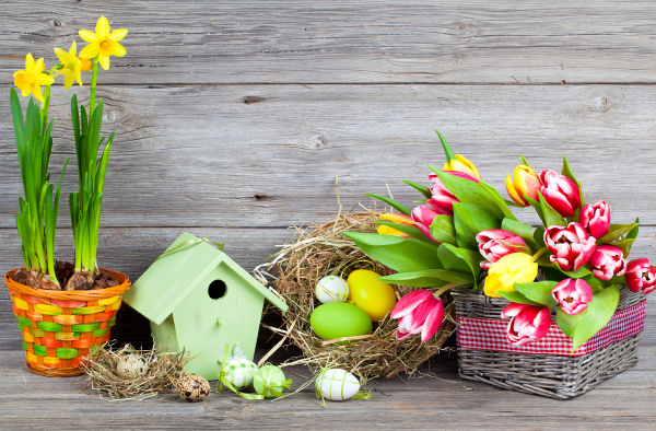 easter decoration with easter eggs quail