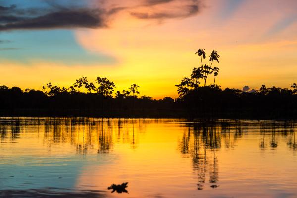 colorful amazonian sunset