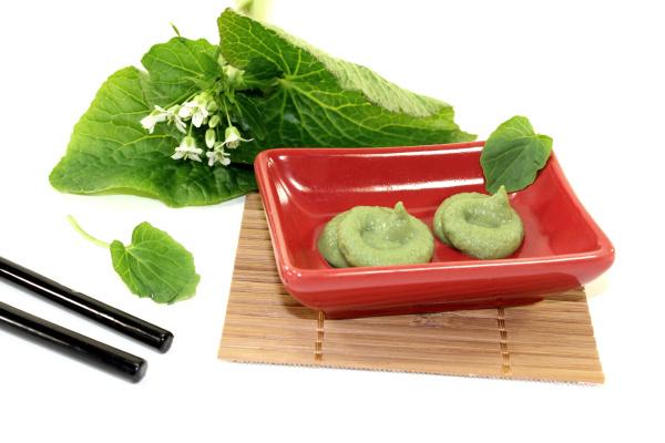 wasabi with chopsticks leaf and flower
