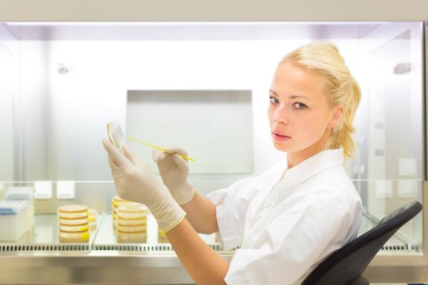 scientist observing petri dish