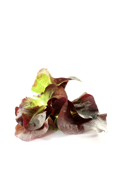 fresh delicious red salad