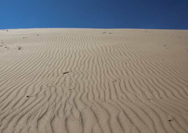 sand dune with wind patterns and