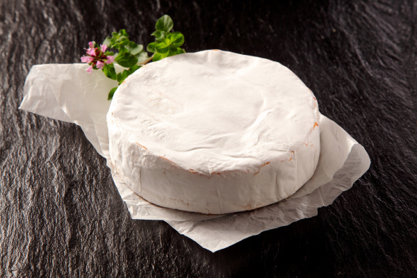gourmet soft ripe camembert cheese