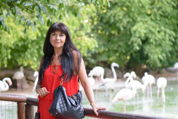 girl and flamingos