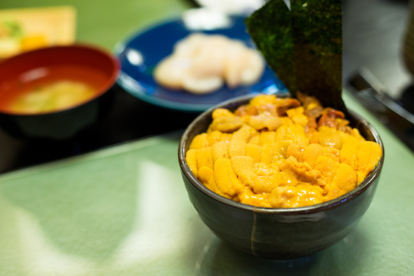sea urchin don