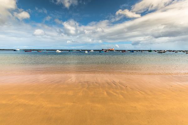 beach, teresitas, in, tenerife, , - 16356217