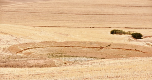 landscape with dried up water hole