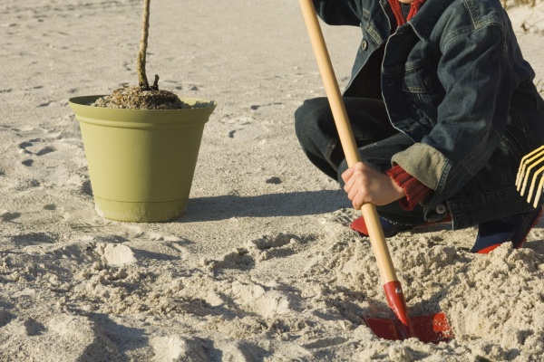 boy digging hole on sandy beach