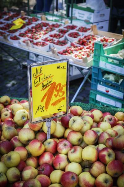 germany lower saxony hildesheim apples sort