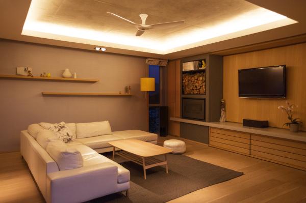 illuminated tray ceiling over home showcase