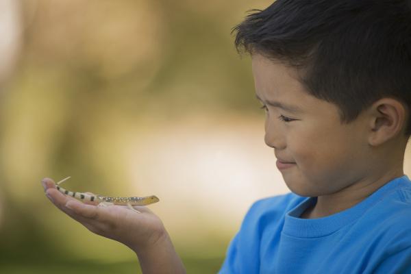 a boy holding a gecko or
