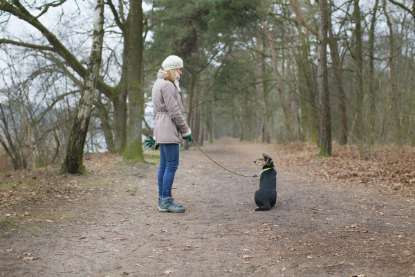 mid adult woman and her dog