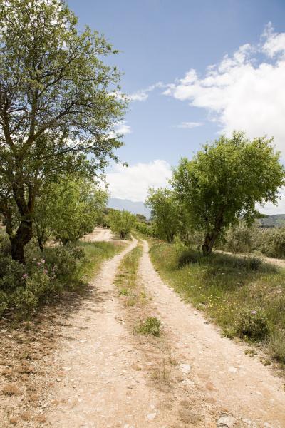 rural dirt track in granada spain