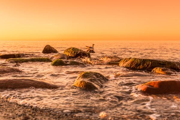 sunset or sunset beach