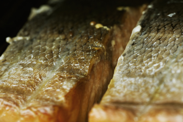 close up of fish fillets on