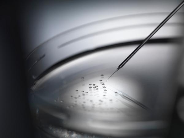 micro pipette and cells in petri