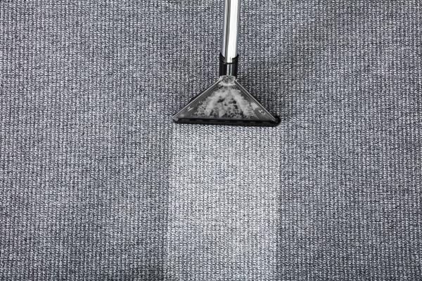 vacuum, cleaner, cleaning, carpet - 20491215