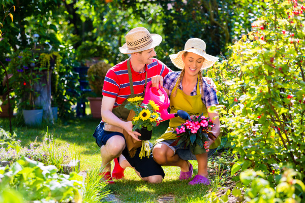 couple planting flowers in garden