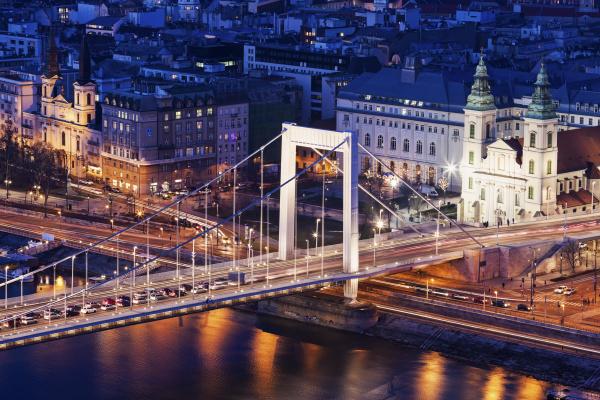 riverfront cityscape with elisabeth bridge and