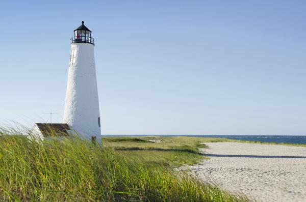 great point lighthouse on overgrown beach