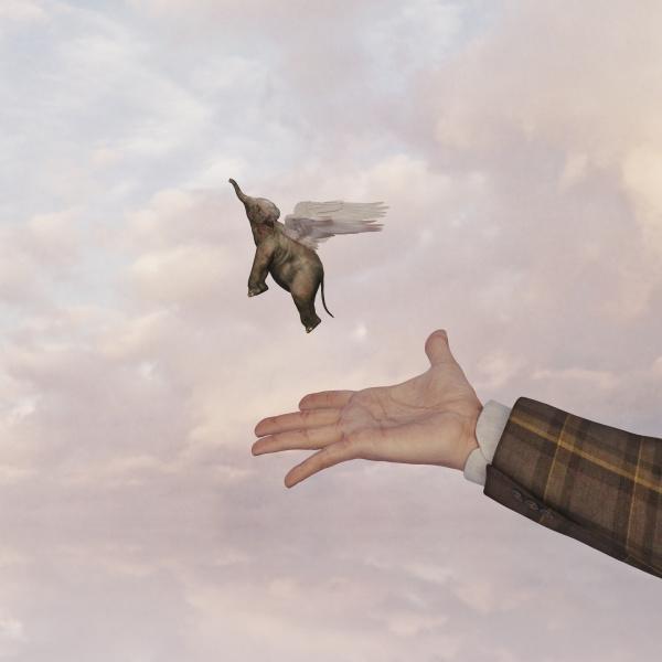 hand of man releasing flying baby