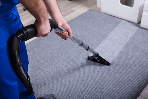 janitor, cleaning, carpet - 24470690