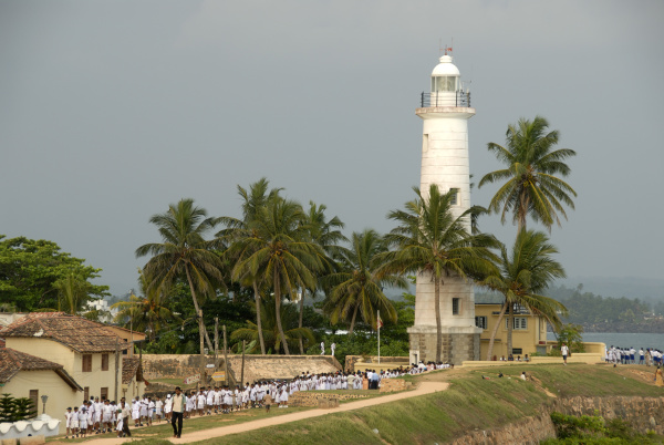 white lighthouse with palm trees