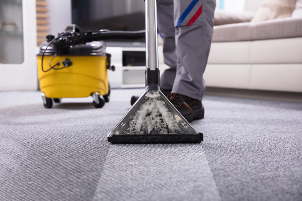 person, cleaning, carpet, with, vacuum, cleaner - 24576550