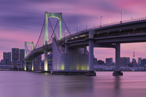rainbow bridge and tokyo tower against