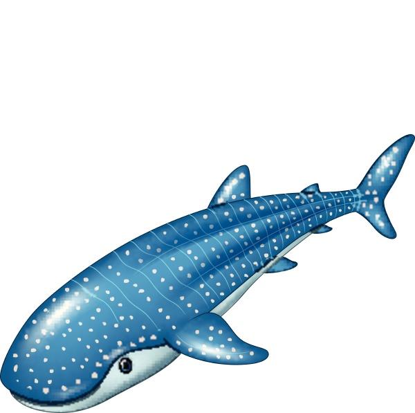 cartoon whale shark isolated on white